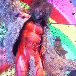 Flaming Lips_6-12-14_Fillmore (510)